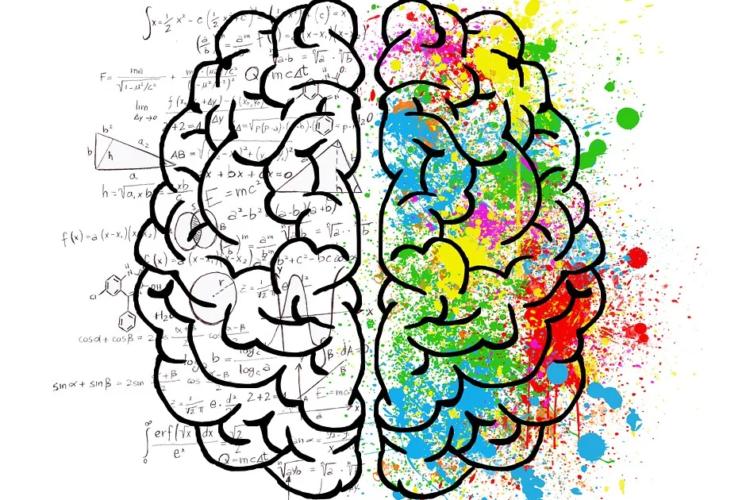 Gehirnleistung unterstützen